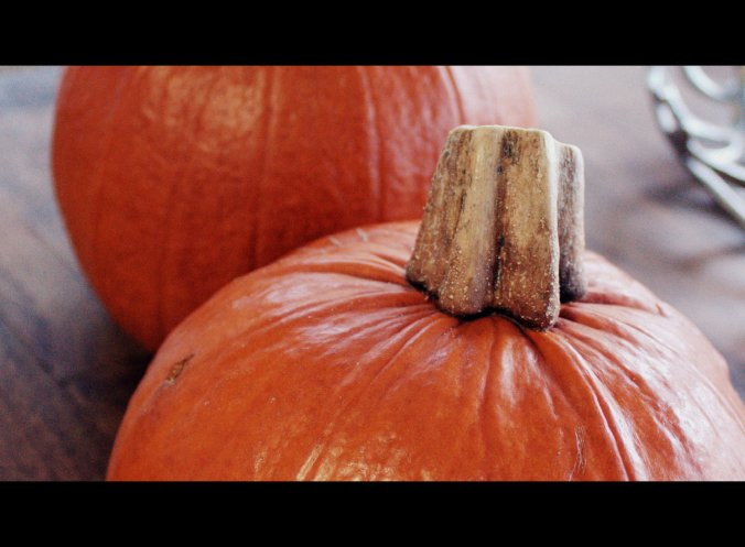 Quit buying canned pumpkin - making your own is WAY too easy!