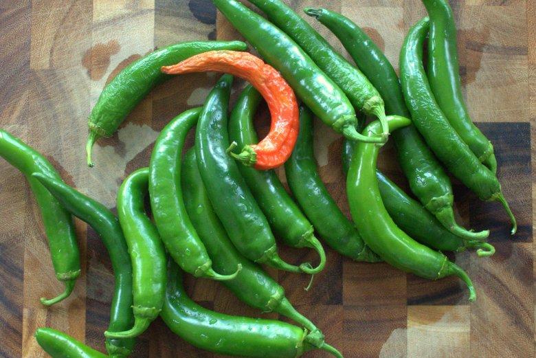 Pickled Hot Garden Salsa Peppers | www.thebahamallama.com