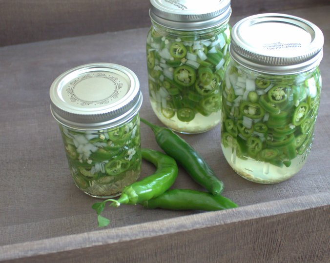 Pickled Hot Garden Salsa Peppers | www.thebahamallama.com