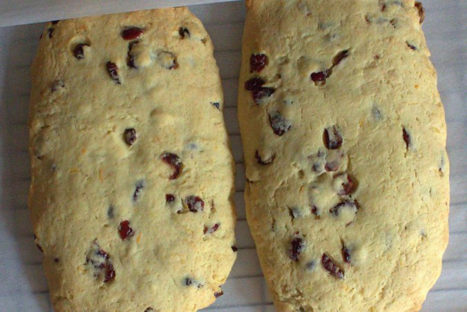 Cranberry Orange Biscotti with White Chocolate Drizzle | www.thebahamallama.com